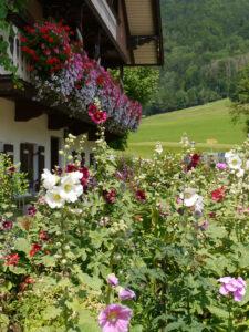 Der Garten zur Straßenseite