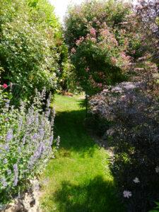 Rasenwege führen durch die Sichtachsen im Rosengarten Josefine Heinze, Grattersdorf