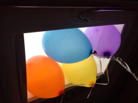 """""""99 Luftballons...."""" 1 Jahr Wurzerlsgarten"""