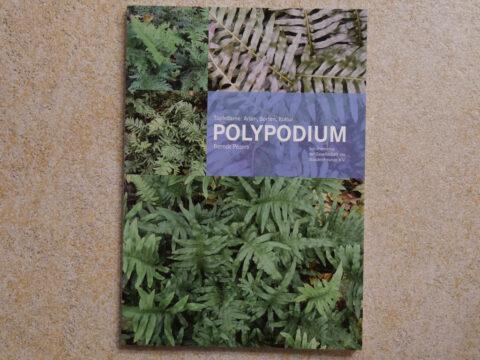 Polypodium, Pflanzenmonografie von Berndt Peters, erschienen in der Schriftenreihe der Gesellschaft der Staudenfreunde