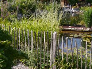 Natur-Schwimmteich, Chiemgau-Kaktus