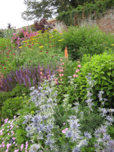 Hot and Cool Garden in Coughton Court